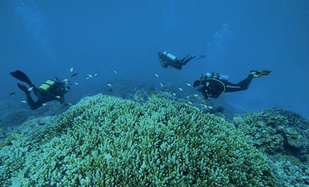 N246_Exploration-des-oceans