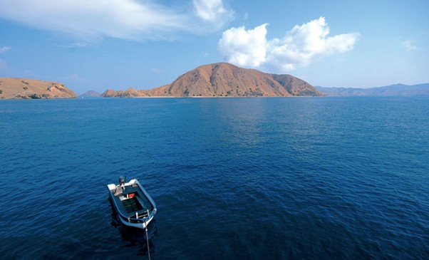 N246_Komodo-plongee-au-bord-du-monde