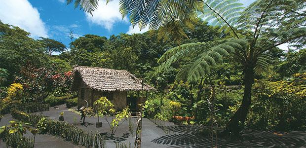 N256_Fidji-Vanuatu-Plongees_2
