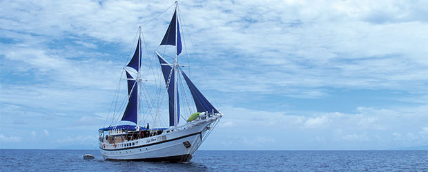 N256_Fidji-Vanuatu-Plongees_3