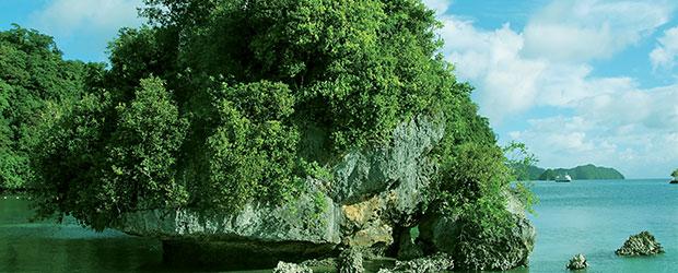N248_Palau-lac-aux-meduses_2