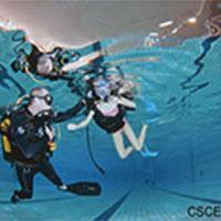 CSCE-1-
