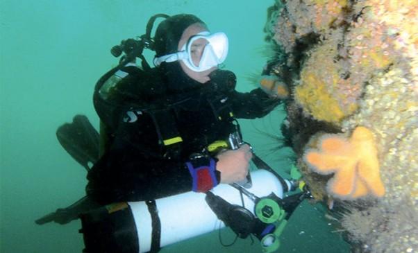 N258_Plongees-Armoricaine