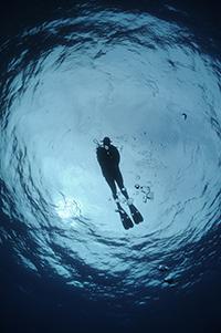 Catégorie «soleil»: plongeuse dans le bleu.© Yves Gillet