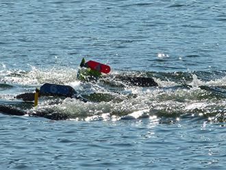 RONDE DES CHEIRES-nageurs