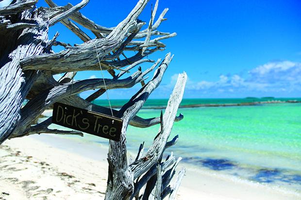 Bahamas_LS-40
