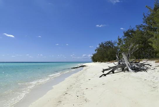 Plage Heron Island.