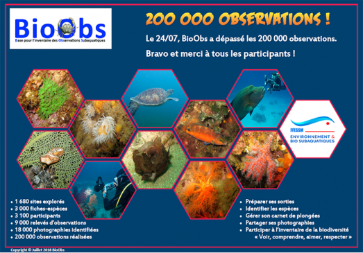 BioObs-200000-observations copie