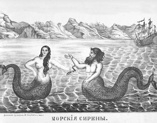 Historique repro1866