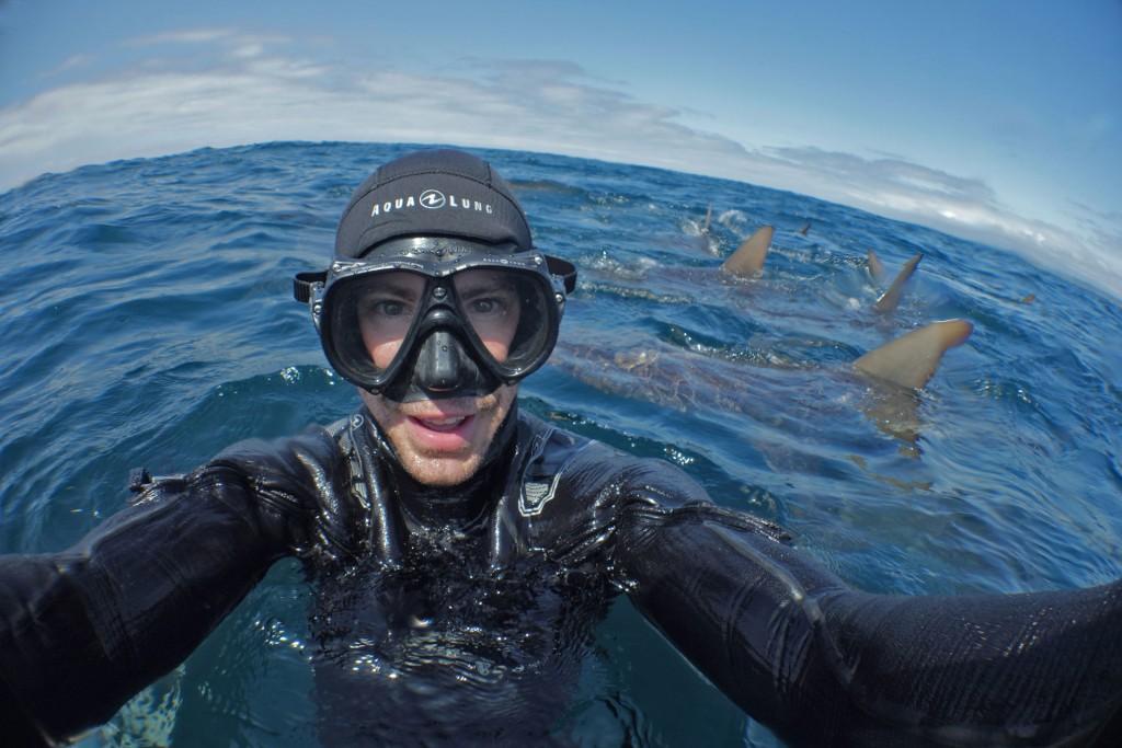 Steven Surina entouré par les requins
