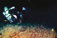 bengasi-plongeur